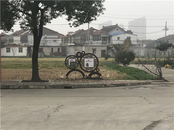 江苏新农村改造建设推进乡村振兴工作!