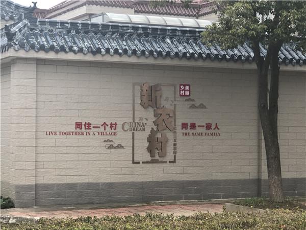 重庆新农村改造